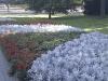 2010-09-04_15-01-40